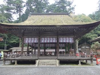 131日吉西本宮拝殿562.JPG