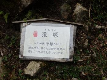 46日吉大社山王参道脇猿塚519.JPG